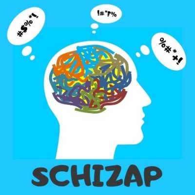 L'application Schizap